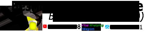 Безмотылка в Украине Безнасадка рулит логотип МАЛЫЙ